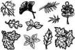 silikónové pečiatky- Listy
