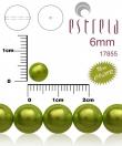 voskované perličky 6mm/10 ks/metalické zelené
