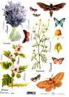 Ryžový papier 210x297mm-Bylinky, hmyz a motýle