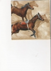 Kone v behu