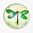 KABOŠON sklenený 25 mm-Vážka s ružou