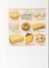 rôzne druhy syra