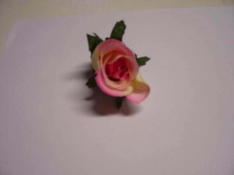 ruža puk